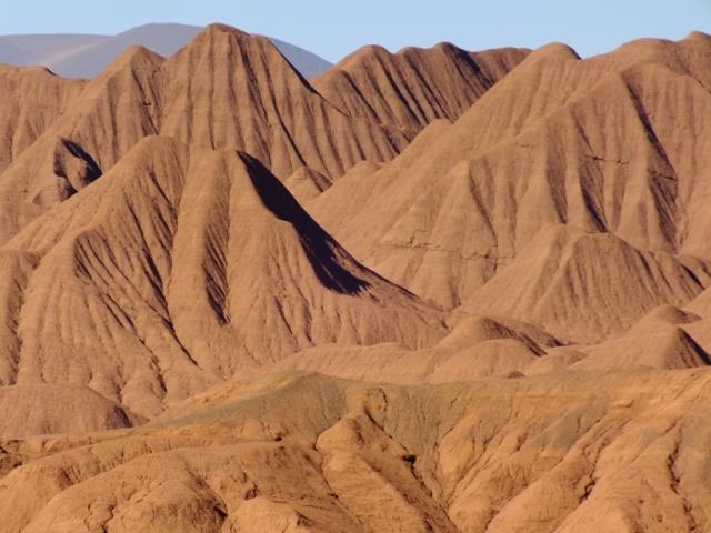 Entre las dunas